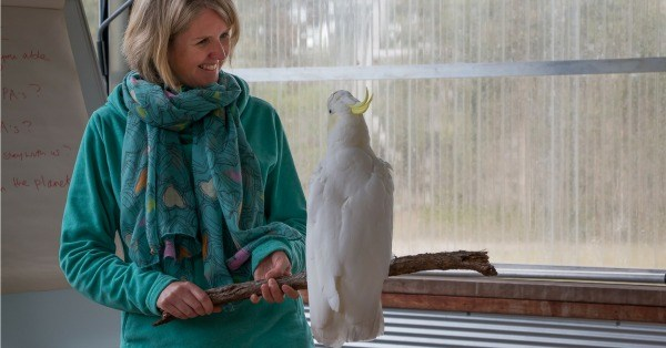 Australia Animal Communication Training