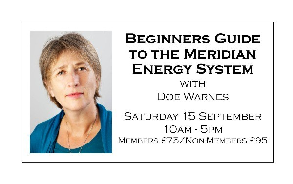 Beginners Guide to the Meridian Energy System