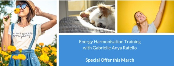 Energy Harmonisation Online Training