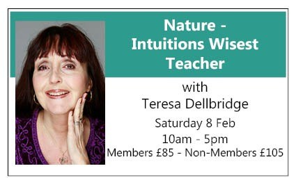 Nature - Intuitions Wisest Teacher