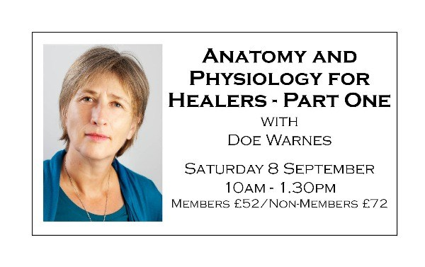 Anatomy and Physiology for Healers - Part One
