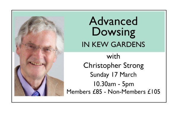 Advanced Dowsing in Kew Gardens