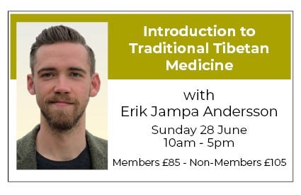 Introduction to Traditional Tibetan Medicine