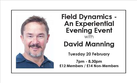Field Dynamics - An Experiential Evening Event