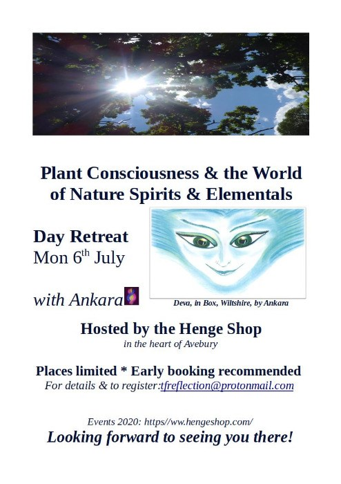 Plant Consciousness & the world of Nature Spirits & Elementals