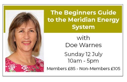 The Beginners Guide to the Meridian Energy System