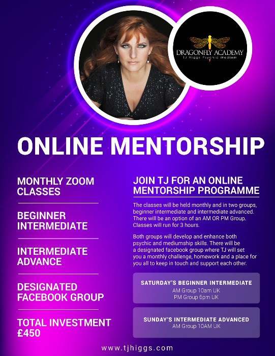 Online Mentorship with TJ Higgs