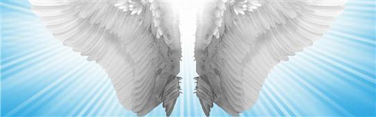 banner_inner